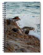 Waves Hitting The Rocks Spiral Notebook