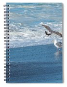 Waves In The Pacific Ocean, Point Reyes Spiral Notebook