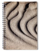 Waves Of A Desert - Mesquite Sand Dunes Spiral Notebook