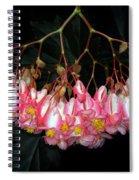 Wax Begonia Spiral Notebook