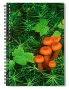 Wax Cap Fungi Spiral Notebook