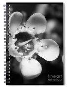 Wax Flower Spiral Notebook