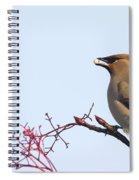 Waxwing  Spiral Notebook