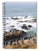 We All Can Get Along Spiral Notebook
