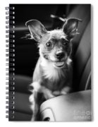We Goin For A Ride Spiral Notebook