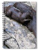We Otter Snuggle Up Spiral Notebook