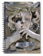 Weathered And Wise Spiral Notebook