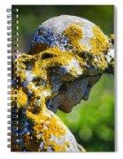 Weathered Angel Spiral Notebook