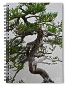 Weathered Bonsai Spiral Notebook