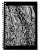 Weathered Wood Triptych Bw Spiral Notebook