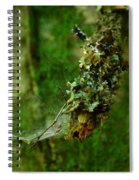 Web N Things Abstract Spiral Notebook