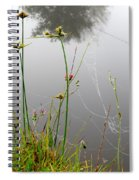 Web Of Pearls Spiral Notebook
