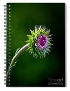 Webbed Thistle Spiral Notebook