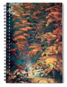 Webster's Falls Spiral Notebook
