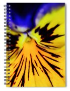 Wee Kiss Of The Sun Spiral Notebook