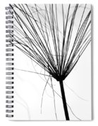 Weed By The Lake Spiral Notebook