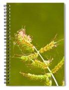 Weed Spiral Notebook