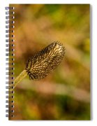 Weed Seed Head Spiral Notebook