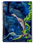 Weedy Seadragon Spiral Notebook