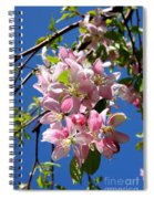 Weeping Cherry Tree Blossoms Spiral Notebook
