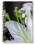 Weeping Lily Spiral Notebook