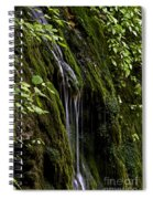 Weeping Rock Spiral Notebook