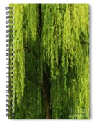 Weeping Willow Tree Enchantment  Spiral Notebook