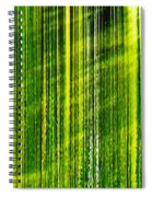 Weeping Willow Tree Ribbons Spiral Notebook
