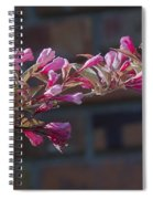 Weigela  Spiral Notebook