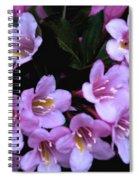 Weigela Blossoms Spiral Notebook