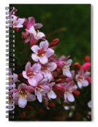 Weigela Branch Spiral Notebook