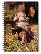 Weimaraner Hunting Dog Retrieving Ring Spiral Notebook