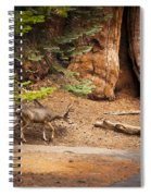 Welcome Home - Sequoia National Forest Spiral Notebook