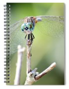 Welcome To My World Dragonfly Spiral Notebook