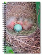 Welcome To The World - Hatching Baby Robin Spiral Notebook