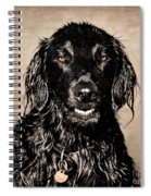 Well You Did Ask For My Best Portrait Smile Spiral Notebook
