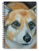 Welsh Corgi Spiral Notebook