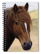 Welsh Pony Painting Spiral Notebook