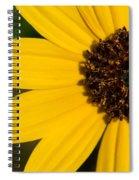 West Coast Dune Sunflower Spiral Notebook