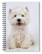 West Highland White Terrier Dog Spiral Notebook