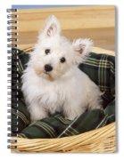 West Highland White Terrier Puppy Spiral Notebook