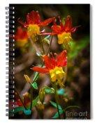 Western Columbine Spiral Notebook