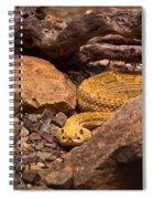 Western Diamondback Rattlesnake 2 Spiral Notebook