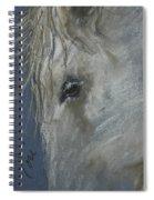 Western Dreamer Spiral Notebook