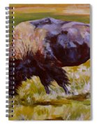 Western Icon Spiral Notebook