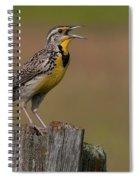 Western Meadowlark.. Spiral Notebook