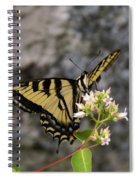 Western Tiger Swallowtail Butterfly 2 Spiral Notebook