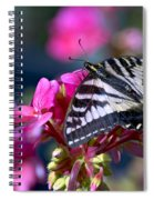 Western Tiger Swallowtail Butterfly On Geranium Spiral Notebook