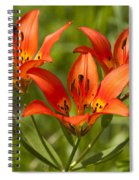 Western Wood Lily Spiral Notebook