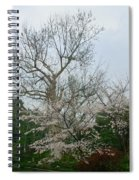 Westlake Park Spiral Notebook